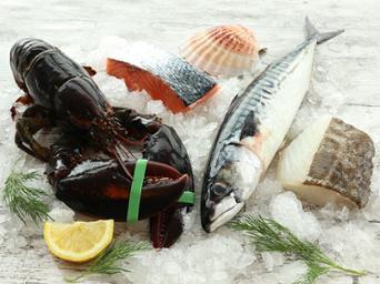 Vis, schaal- en schelpdieren